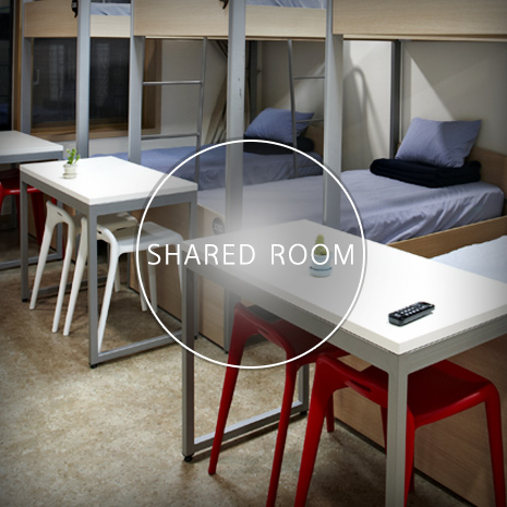 Shared-Room01